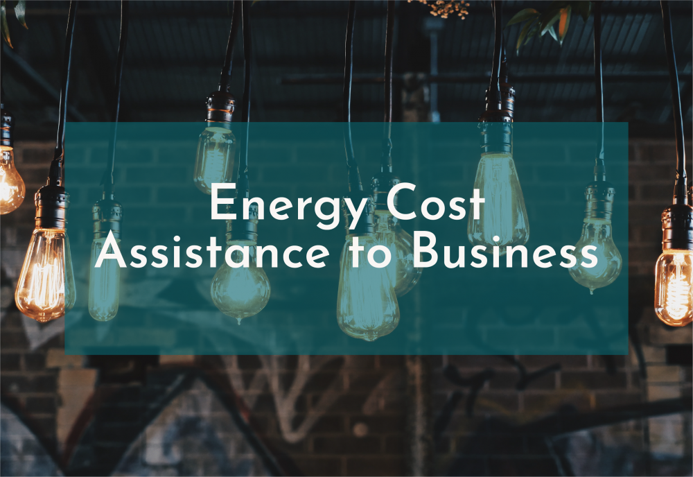 Energy Cost Assistance to Business